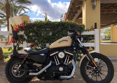 2015 Harley Davidson Custom Sportster